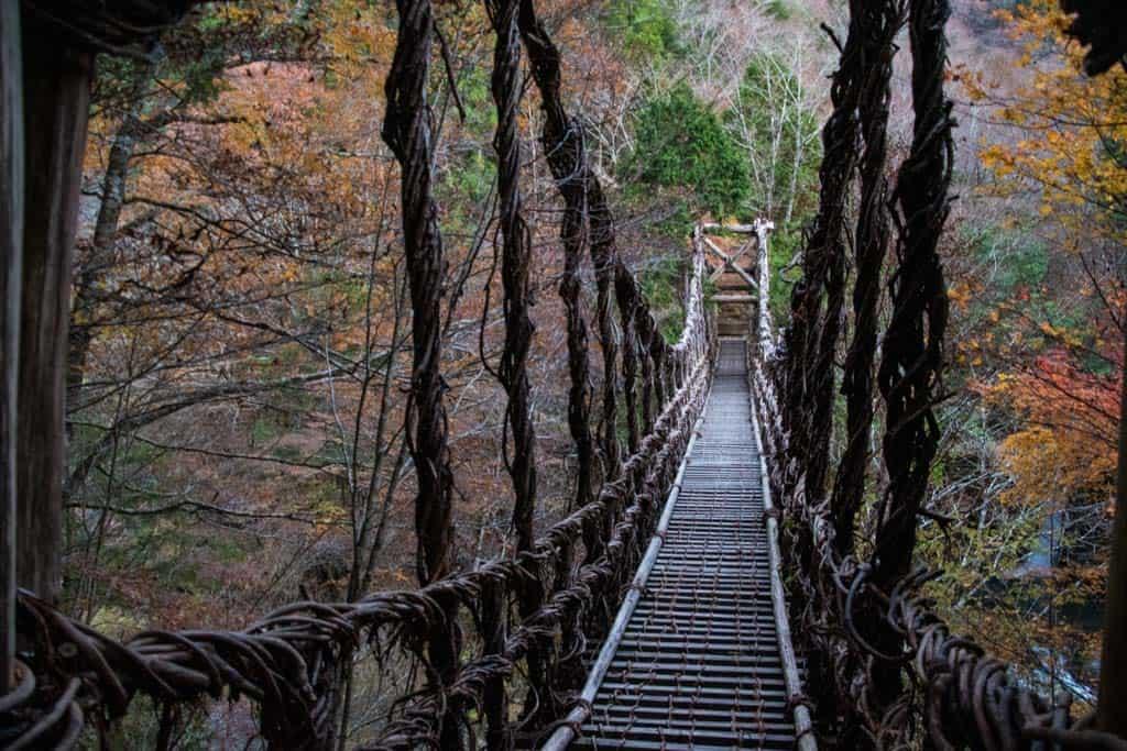 vine suspension bridge in Iya Valley, Tokushima, Shikoku