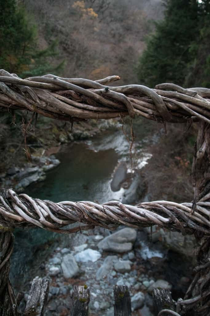 vine details of suspension bridge in iya valley, tokushima, shikoku