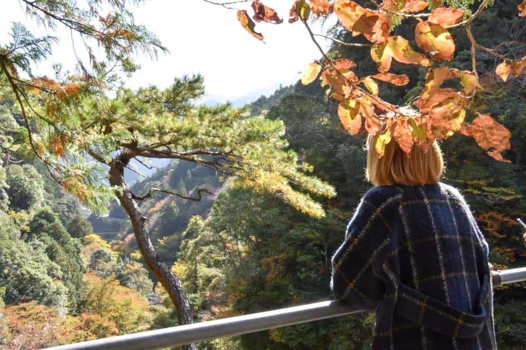 overlooking nakatsu gorge in Yusuhara, Shikoku