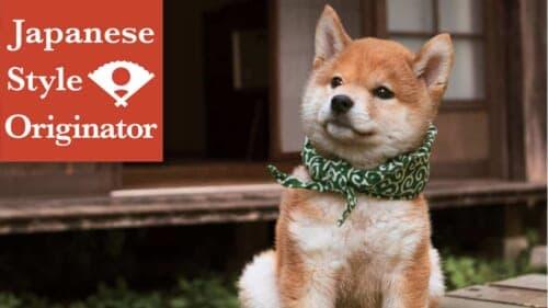 japanese programs on Netflix: mamesuke shiba dog