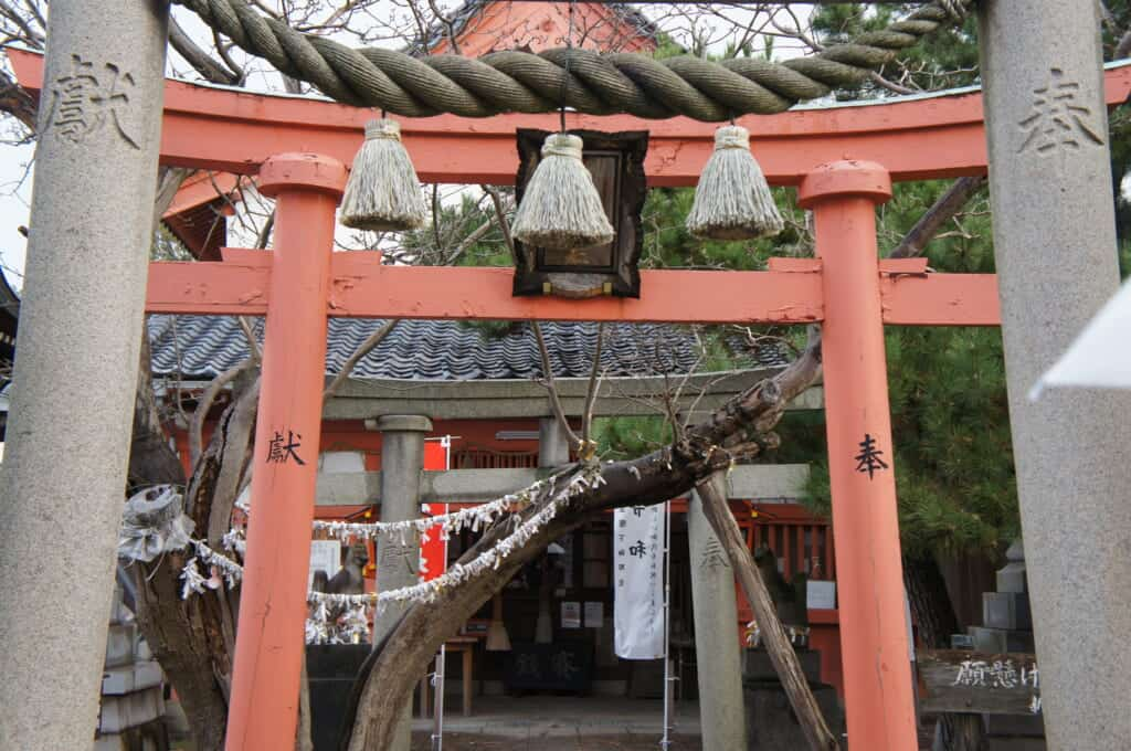 Niigata city shrine and Japanese tori gate