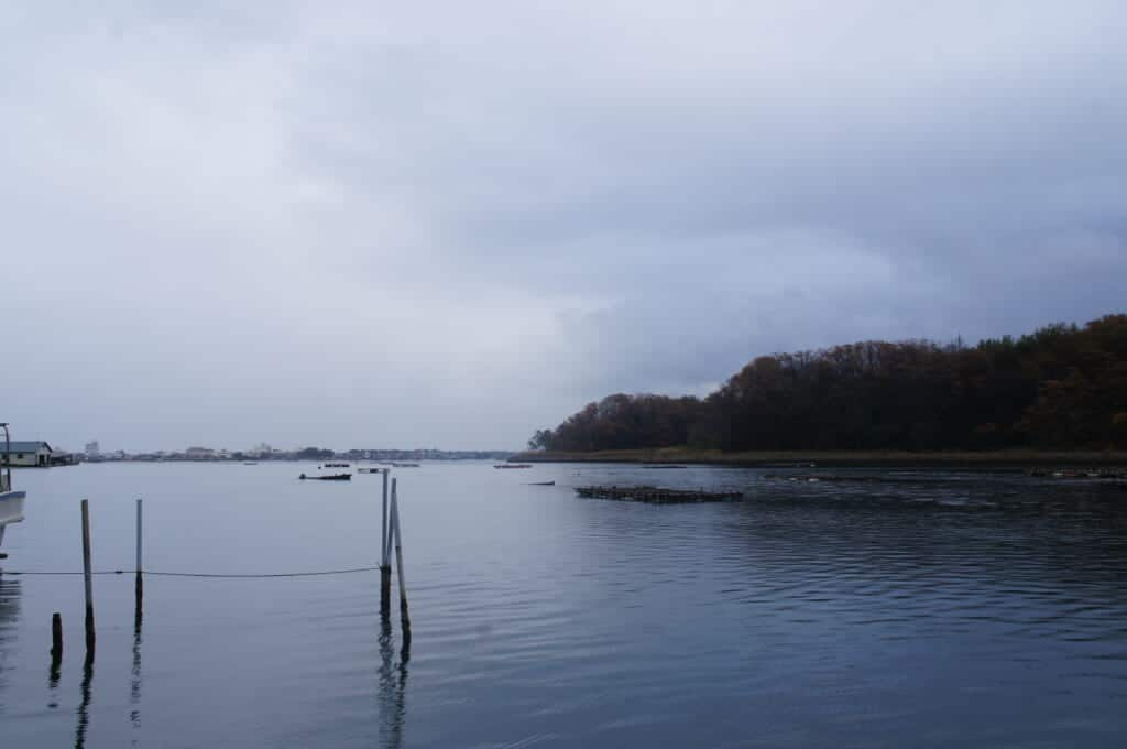Sado Island an oyster boat sets out on Lake Kamo