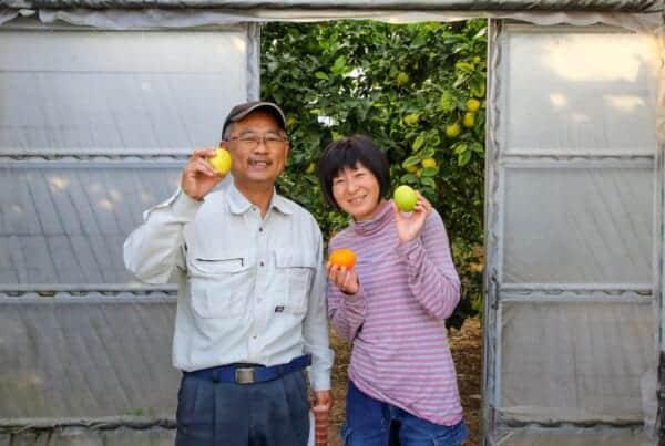 farm stay in rural Japan