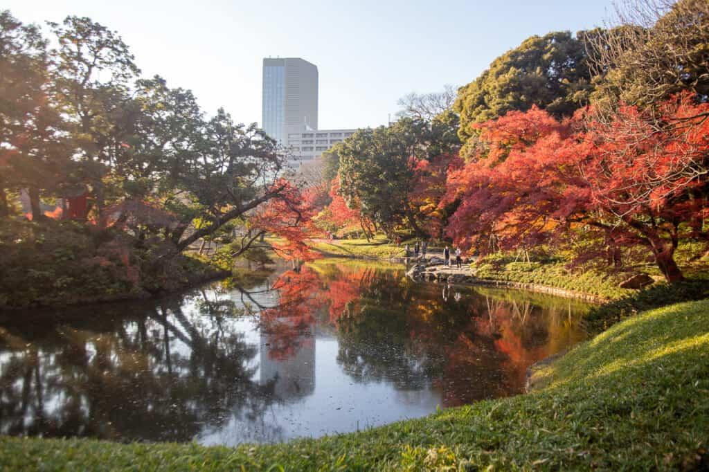 koishikawa korakuen pond view