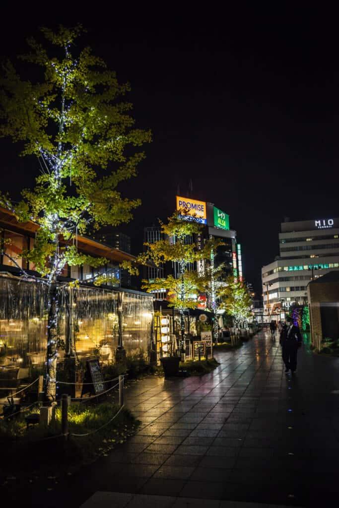 Cafe illuminations inside tennoji park