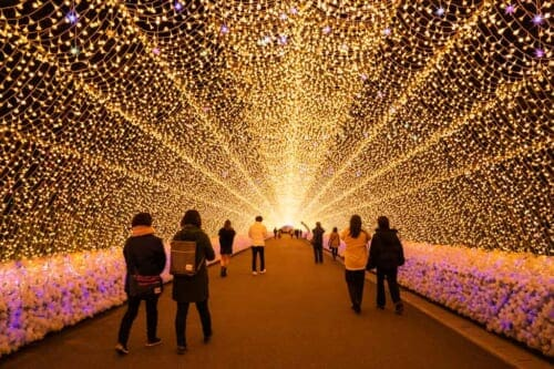 Illumination tunnel at Nabana no Sato