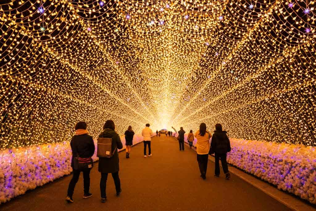 Nabana no Sato Winter Illuminations in Nagoya