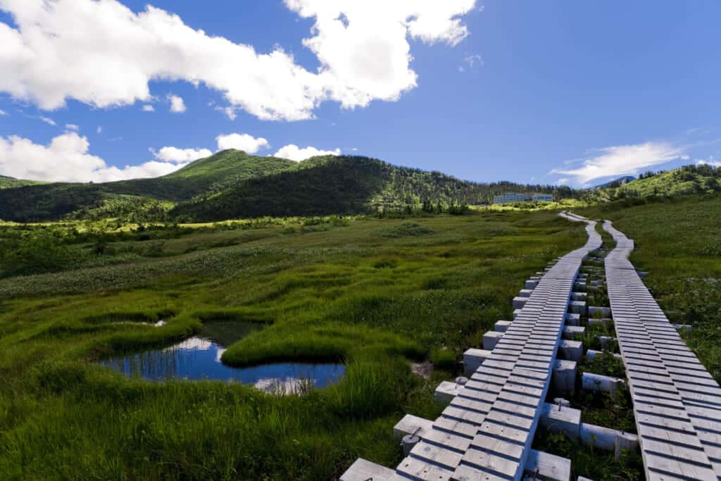 Midagahara plains