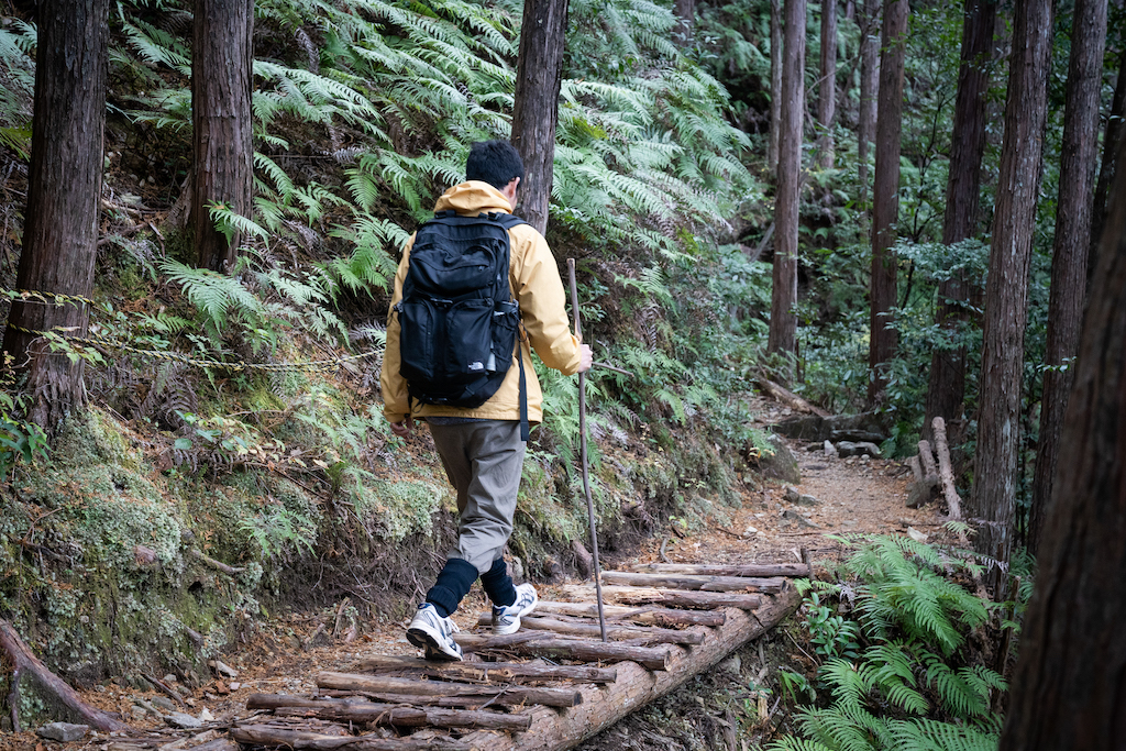 Walking up wooden steps in the forest of Kumano Kodo