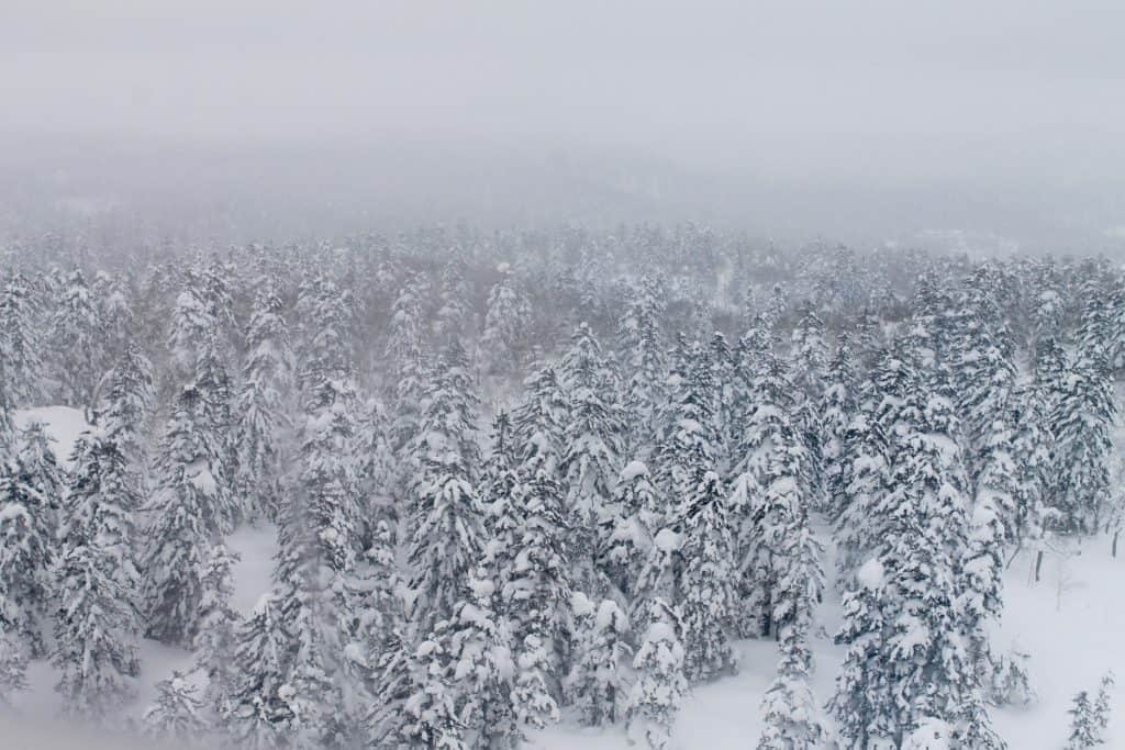 Snowy Environment Hokkaido