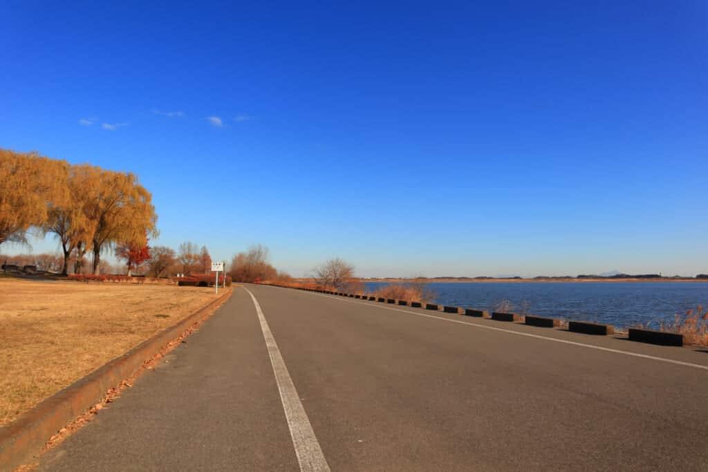Cycling road along the Watarase reservoir in Saitama
