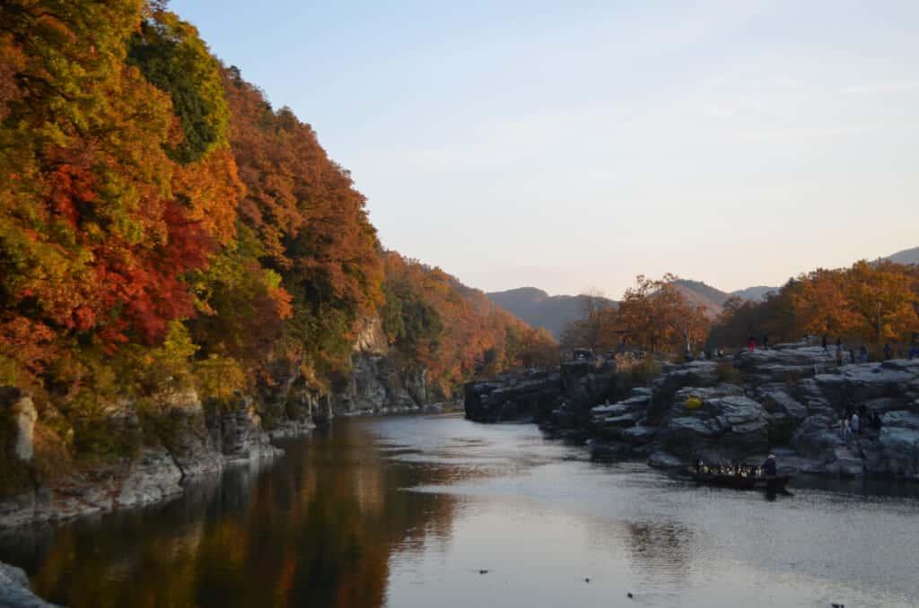The Nagatoro river in Chichibu during momiji season