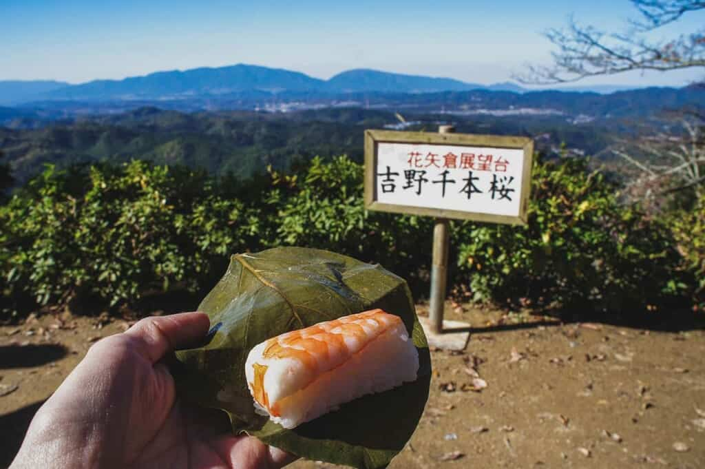 Hand holding kakinoha sushi in persimmon leaf in front of mountain view