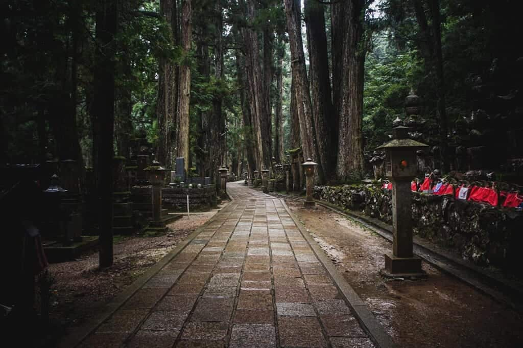 Path through Okuno cemetery in Koyasan: lanterns and jiso among cedars