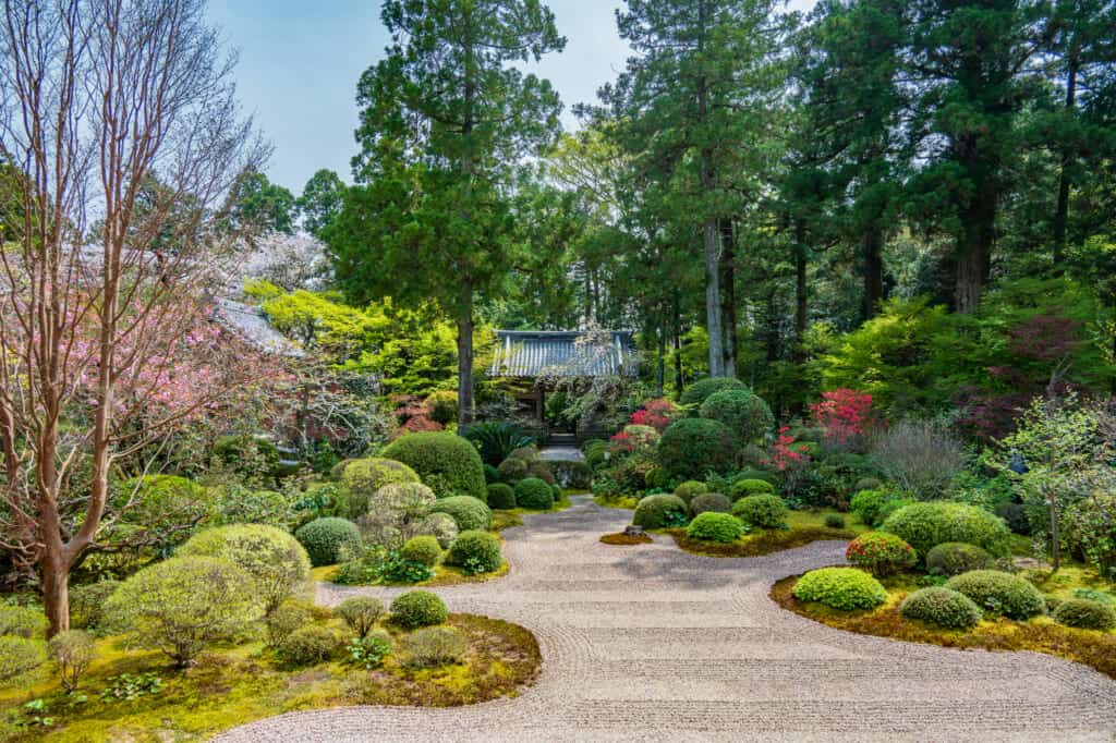 Japanese zen garden of ryotanji temple in hamamatsu neary tokyo