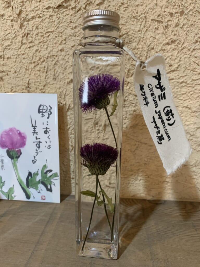 medicinal herb sample in glass jar from Hida Takayama