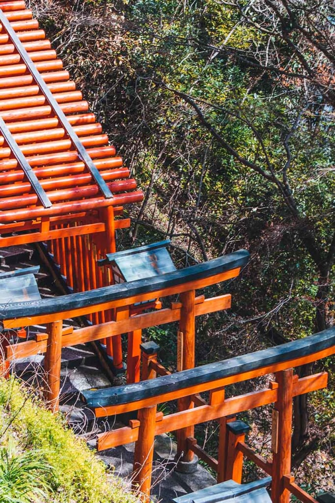Torii gates from above