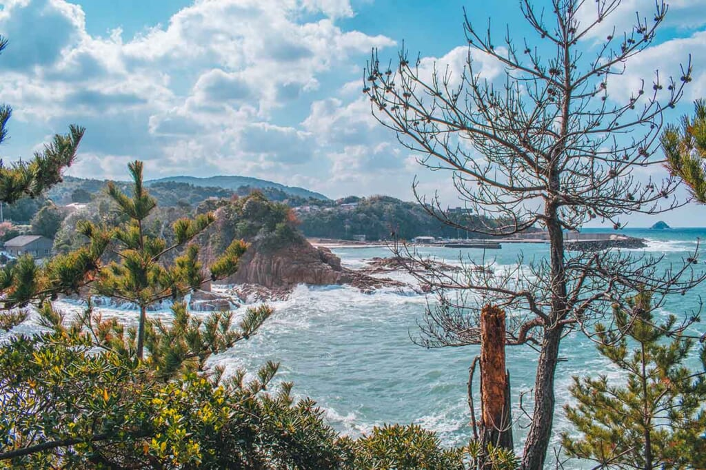 View of the JApanese coastline through the trees