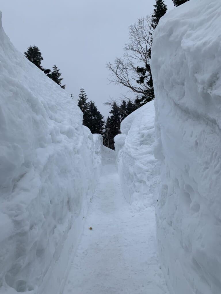 walking path through walls of snow