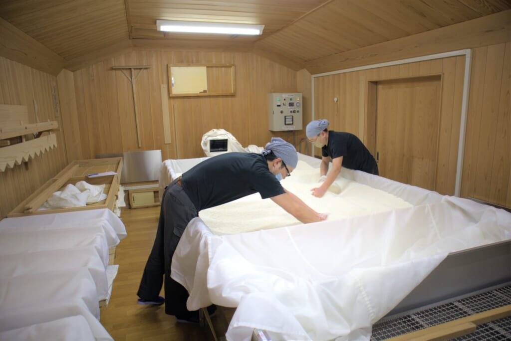 Japanese workers mixing koji by hand in a sealed room in sake brewery