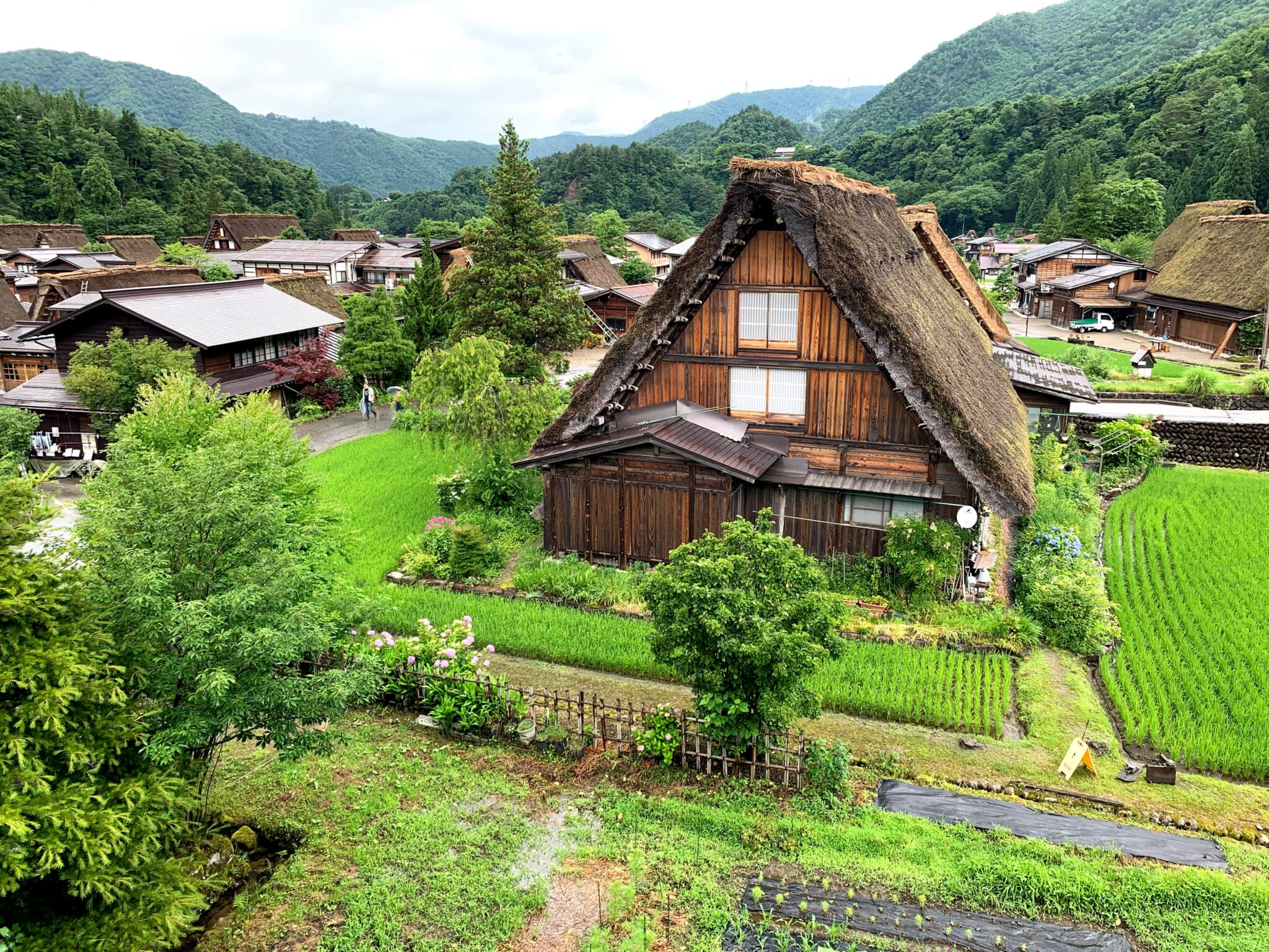 Traditional Japanese thatched house in green rural landscape in Gifu, Japan