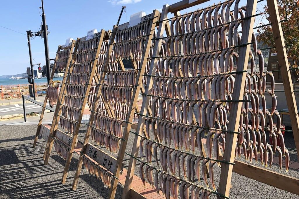 racks of fish hanging to dry in Japan