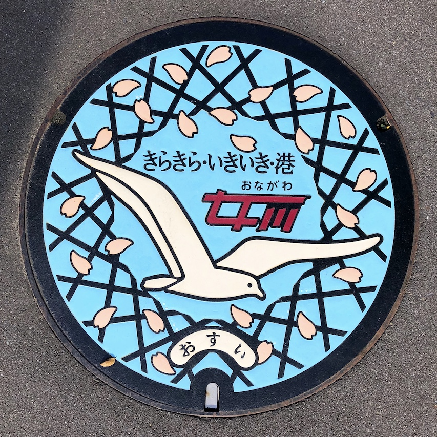 Japanese manhole cover art with seagull in Japan