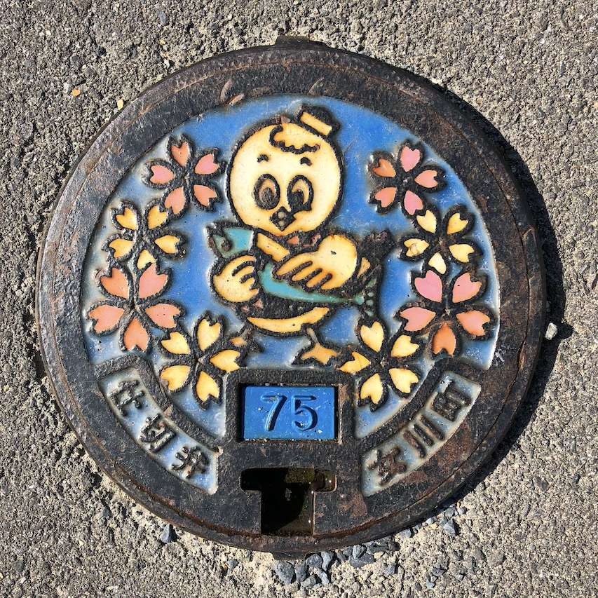 Japanese Manhole cover design with chick holding fish in Japan