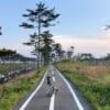 bike path lined with vegetation