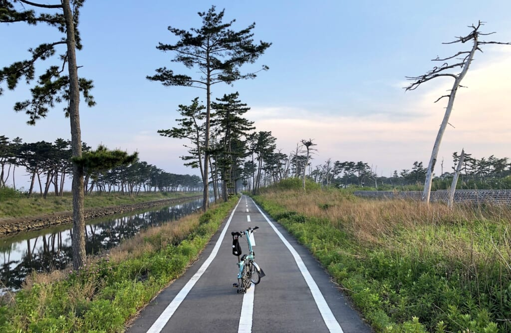bike path lined with vegetation in Tohoku region of Japan