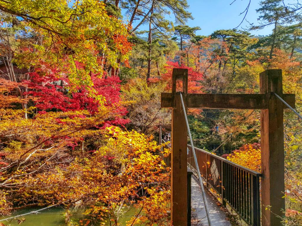 Bridge of Love with autumn kouyo colors in Japan