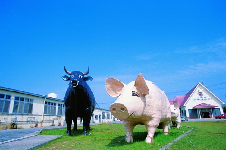 a pig and a cow statues in okiham company in Japan