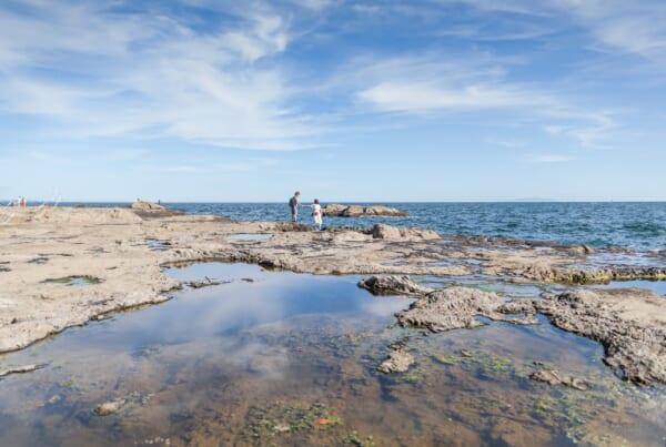 flat rocky plateau on the sea