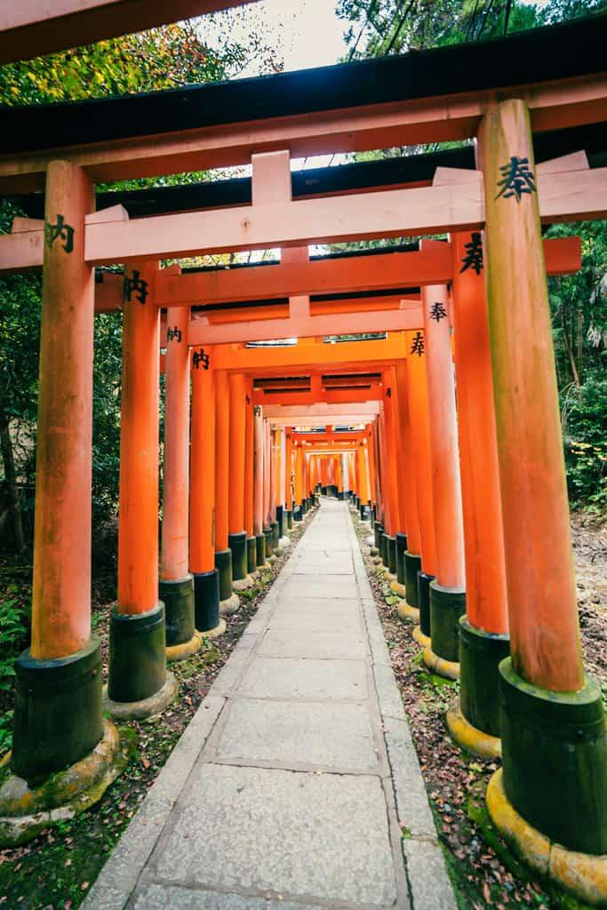 Torii gates at Fushimi Inari Taisha, Japan