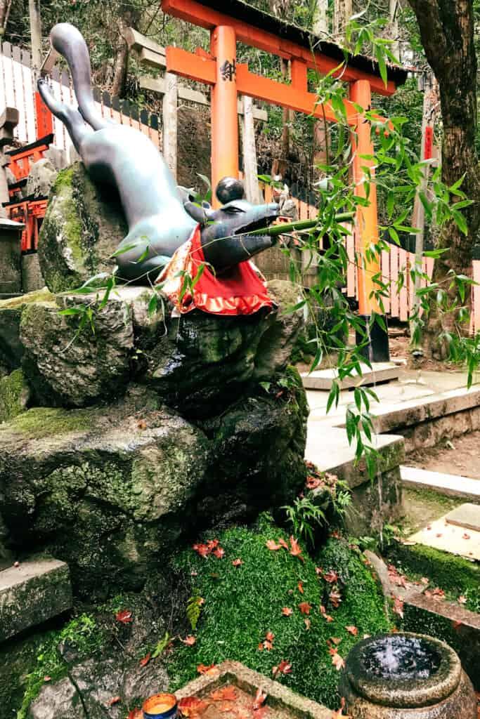 poses fox statue at fushimi inari shrine
