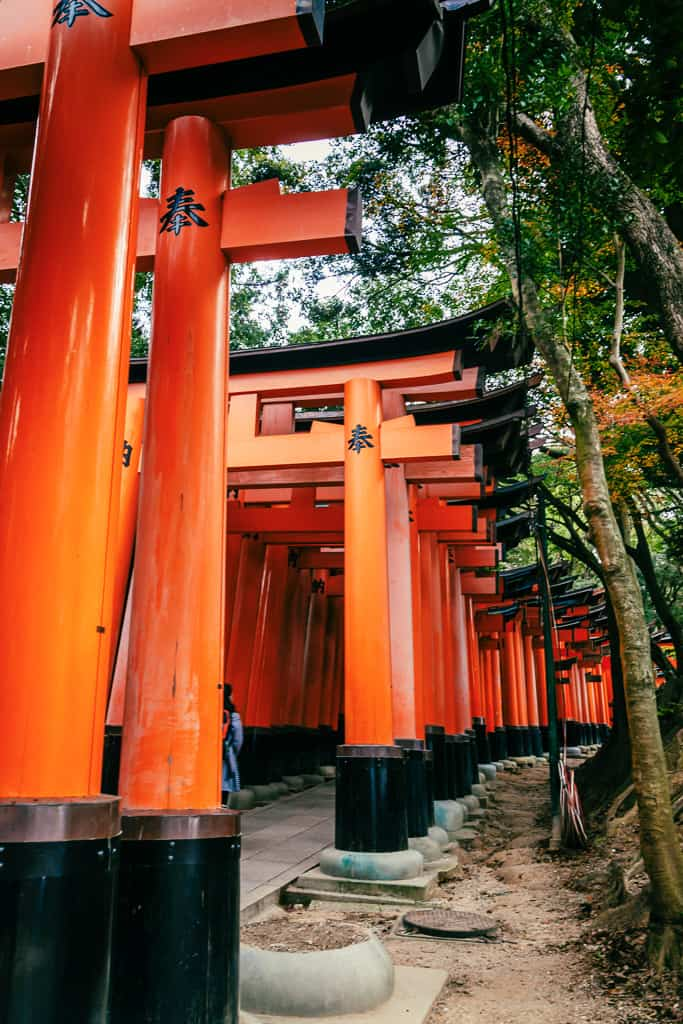 traditional red torii gates in a row in Kyoto