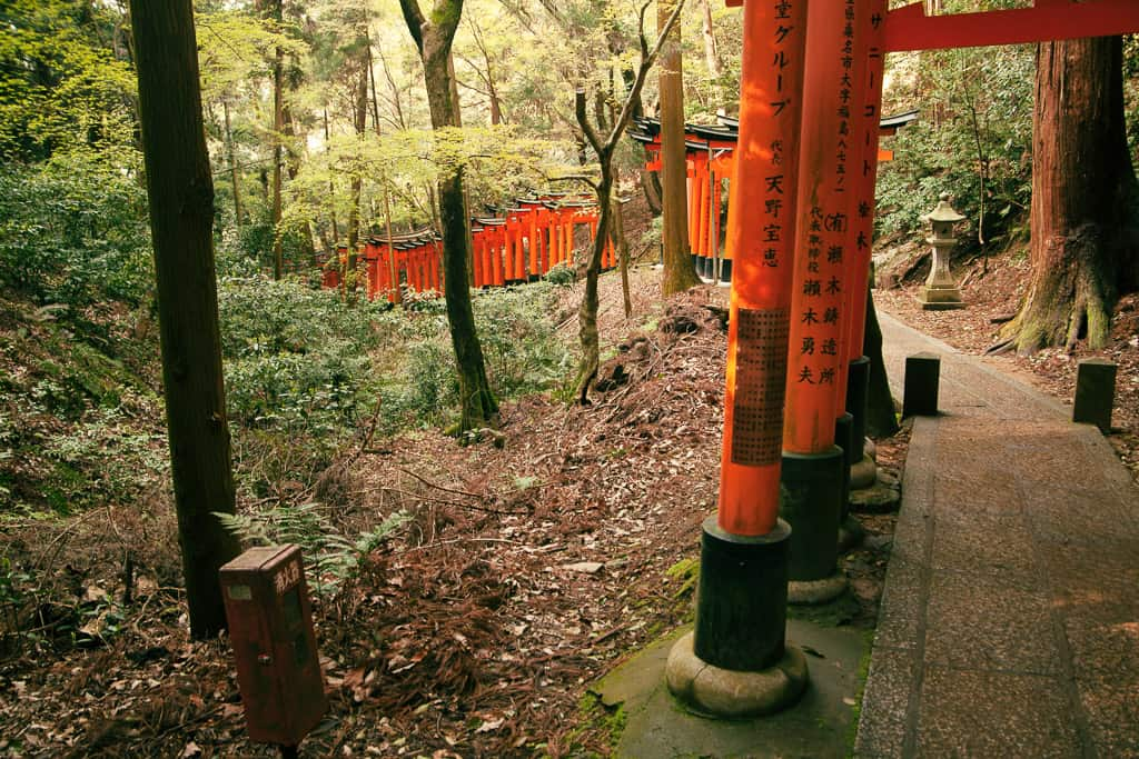 Row of torii gates on the way to Mt. Inari in Kyoto