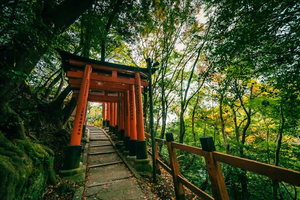 Torii gates at Fushimi Inari Taisha, Kyoto, Japan