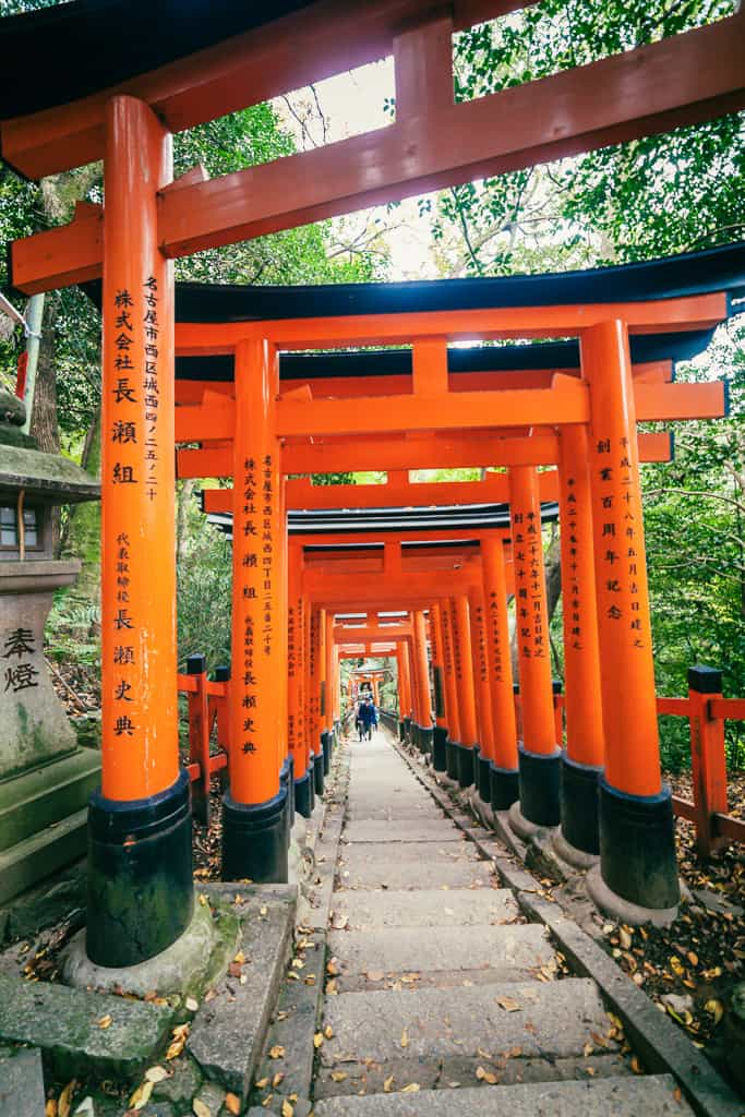 Torii gates at Fushimi Inari Taisha  in Kyoto