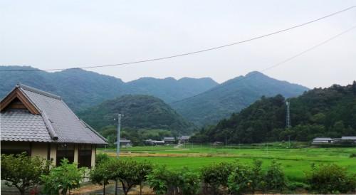 Belle route menant à la ville de Kistuki située dans la péninsule de Kunisaki sur l'île de Kyushu
