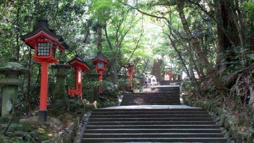 Allée bordée de lanternes tōrō au sanctuaire Usa Jingū, situé dans la péninsule de Kunisaki, au nord de la préfecture d'Ōita sur l'île de Kyushu