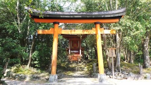 Petit torii au sanctuaire Usa Jingū, situé dans la péninsule de Kunisaki, au nord de la préfecture d'Ōita sur l'île de Kyushu