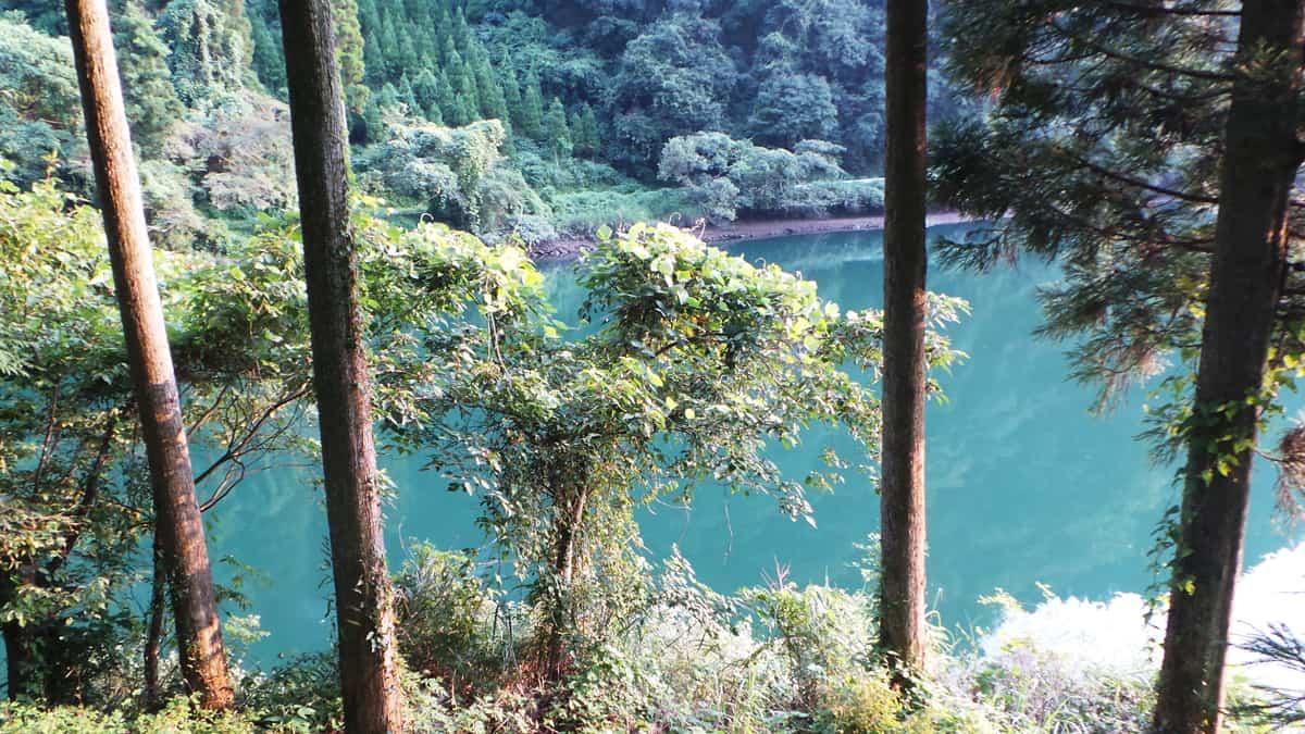 Top 10 Kyūshū : le parc naturel de Yabegawa