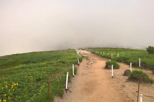 Sentier de randonnée de la montagne Asahidake, parc Daizetsuzan, Hokkaido, Japon.