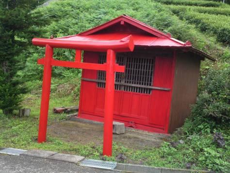 Torii, portails à l'entrée des sanctuaires shinto