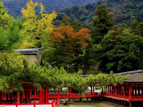 Sanctuaire Itsukushima visite incontournable sur l'île de Miyajima, Japon.