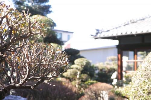 Visite de la maison Meijiya Shoyu, petite fabrique de sauce soja artisanal bio à Hamamastu, Shizuoka