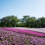 Le jardin botanique Tobu Treasure Garden à Tatebayashi, Gunma