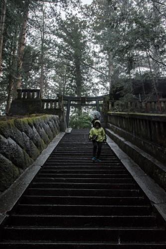 les marches en pierre au sanctuaire Toshogu à Nikko