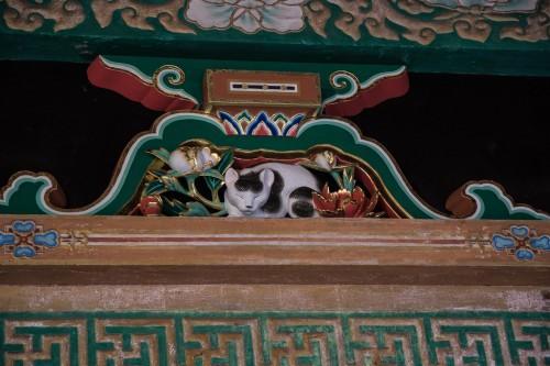 Nemuri-neko au sanctuaire Toshogu à Nikko